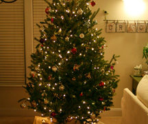 Wordless Wednesday – Oh Christmas Tree, Oh Christmas Tree!