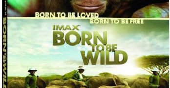 """IMAX: Born to be Wild"" Now on Blu-Ray & DVD – Review #borntobewild"