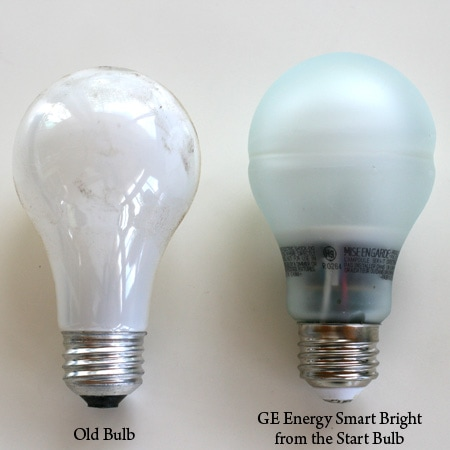 Old & New Standard Bulbs