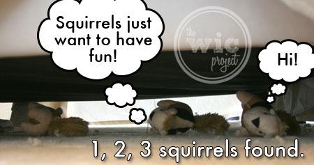 Squirrels 3, 4, 5