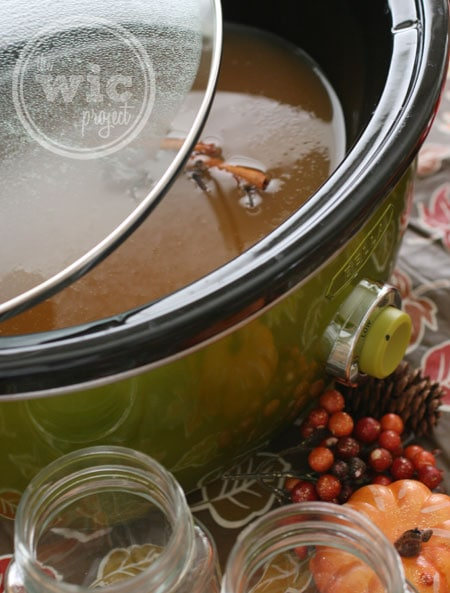 Brewing Apple Cider in the BELLA Dots Slow Cooker