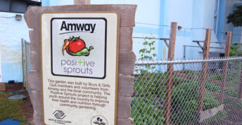 Encourage Healthy Eating with the Boys & Girls Club and Amway POSITIVE SPROUTS Program