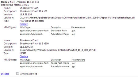 Chrome Flash Plug-ins