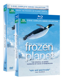 BBC's Frozen Planet DVD and Blu-Ray