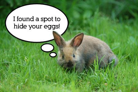 Easter Bunny Hiding Spot