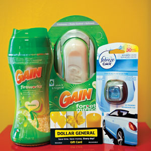 P&G and Dollar General Every Day Hero Prize Pack