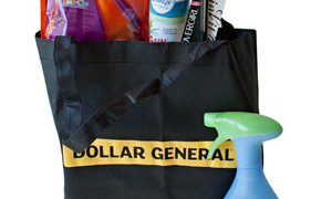 P&G and Dollar General Prize Pack