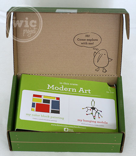 Kiwi Crate Modern Art Box