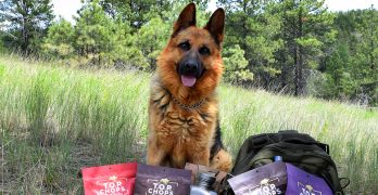 Celebrate National Jerky Day with T.O.P. Chops Beef Jerky